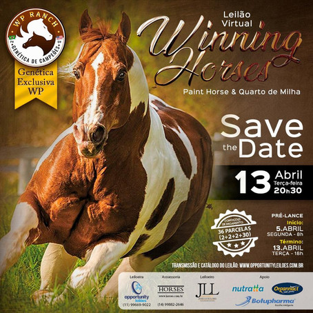 Winning Horses, 13/04/21 - SAVE THE DATE!