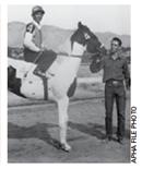 LENDAS PAINT HORSE: BABETTE