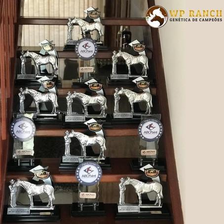 WP Ranch marcou presença e pódio na XXIII e XXIV Etapa da Liga Nacional do Cavalo de Conformação