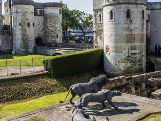 Royal London Tour with City Wonders!