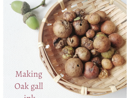 Making Black ink with Oak Galls.