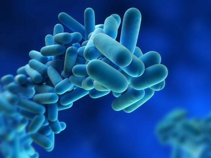 """Allarme Legionella: """"il Governo"""