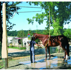 lavaggio del cavallo