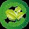 Biodegradabile detergente econanogreen