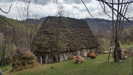traditional roof Apuseni romaniabyjeep.c
