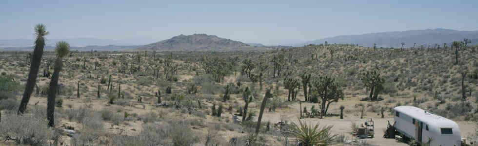 Desert_1.jpg