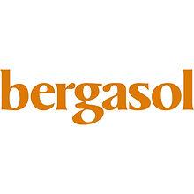 LOGO_BERGASOL.jpeg