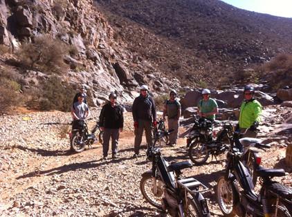 Moped safari