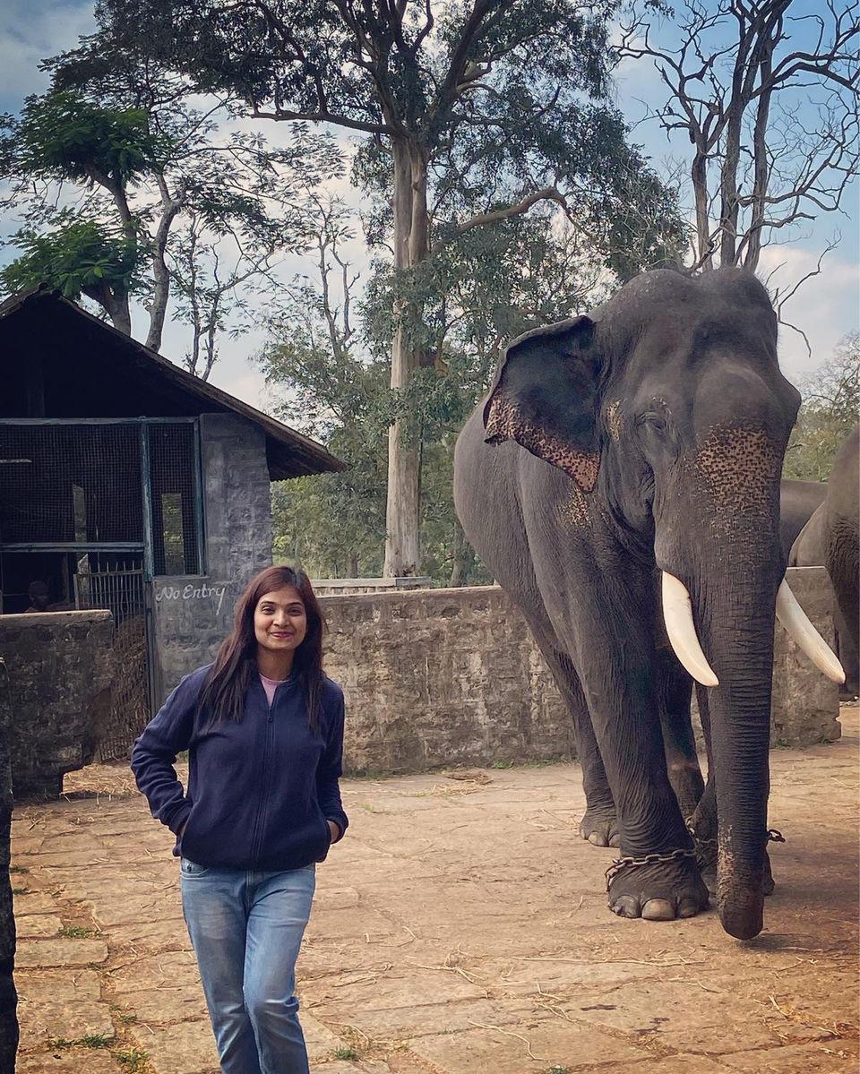 Dubare Elephant Camp, Shot By : tinystunningstories ©