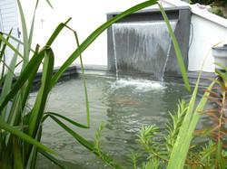 Bassin & lame d'eau