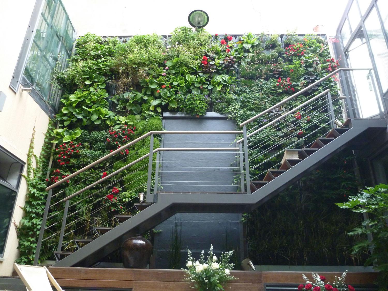Creation Mur Vegetal Exterieur roots paysages | paysagiste | mur végétal naturel