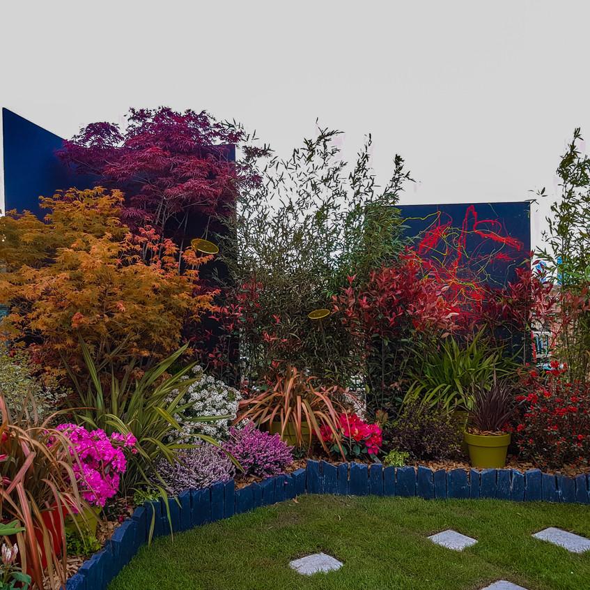 Massif-couleurs-jardin-roots-paysages -