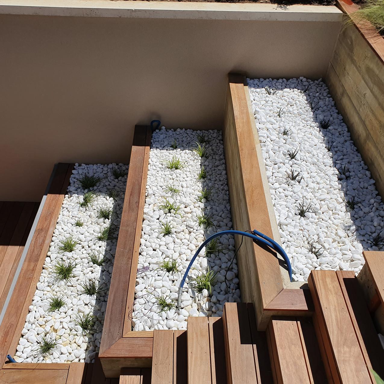 Jardinières avec graminées et galets