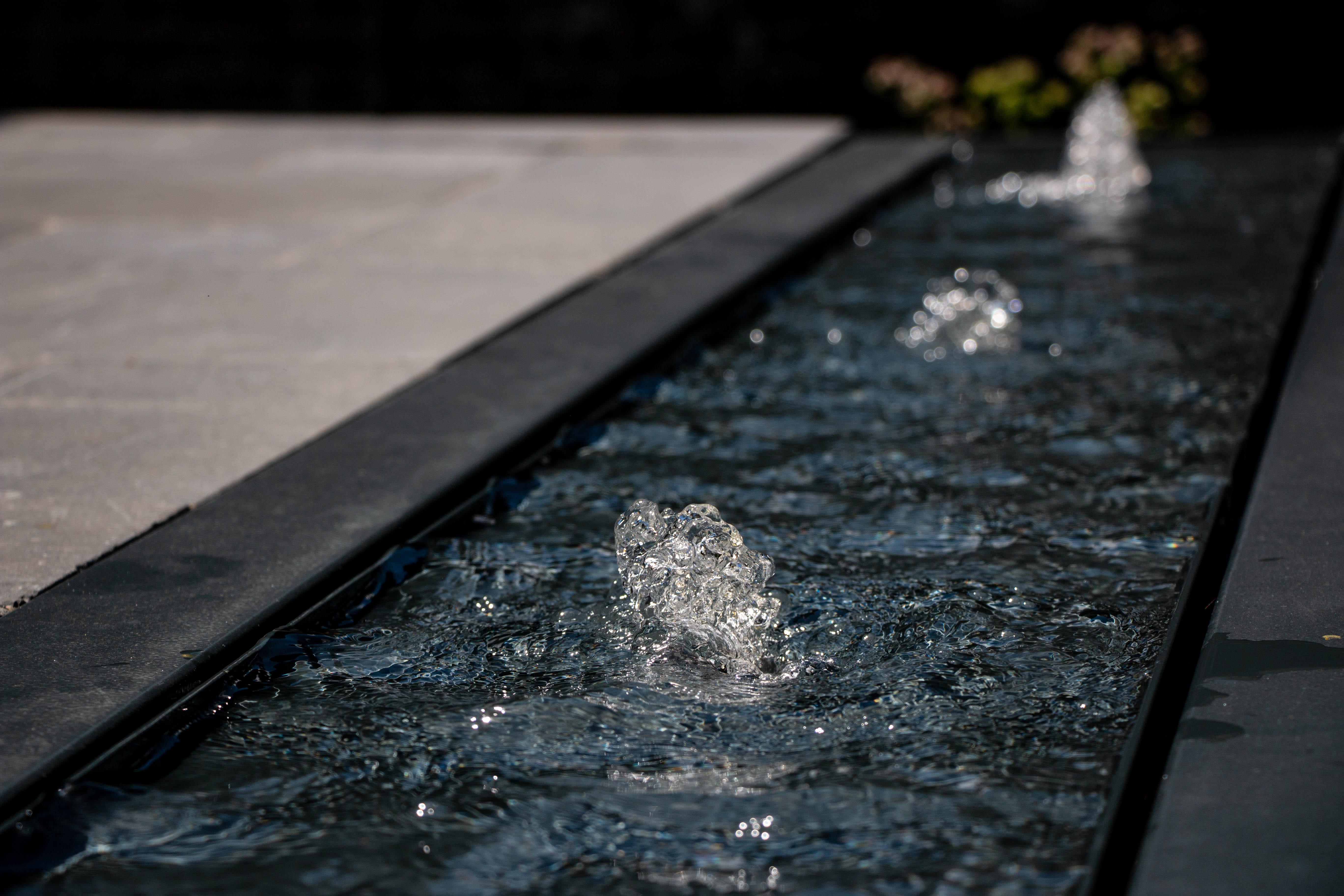 Table-eau-jardin-roots-paysages