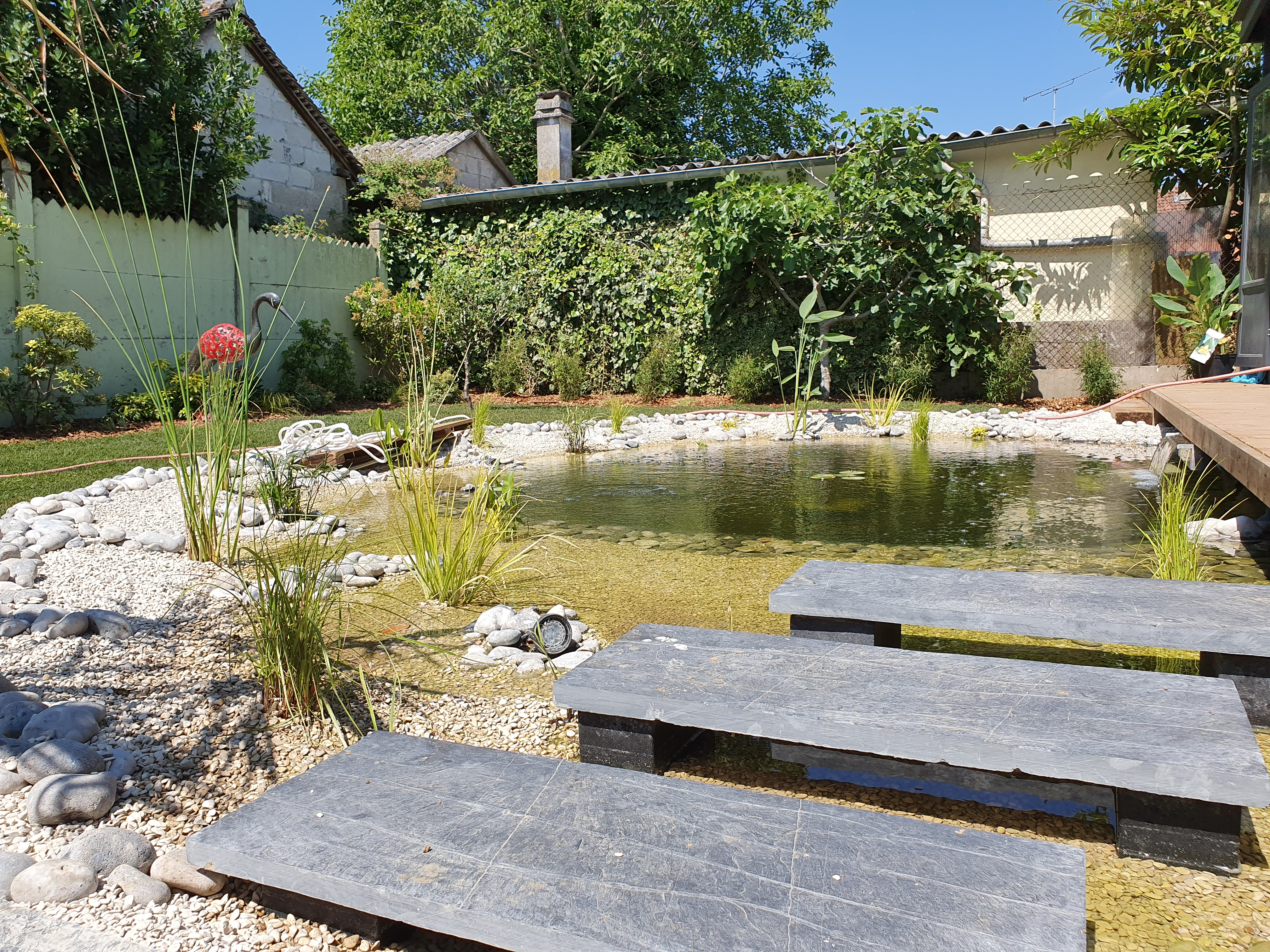 Bassin-amenagement-jardin-roots-paysages