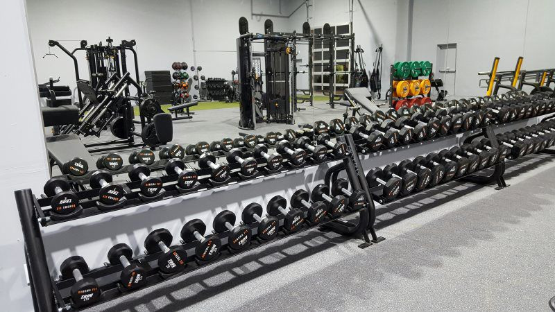 Sonoma Fitness | Sonoma | Weights