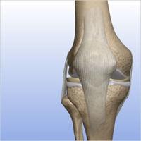 Meniscal Repair 3.jpg