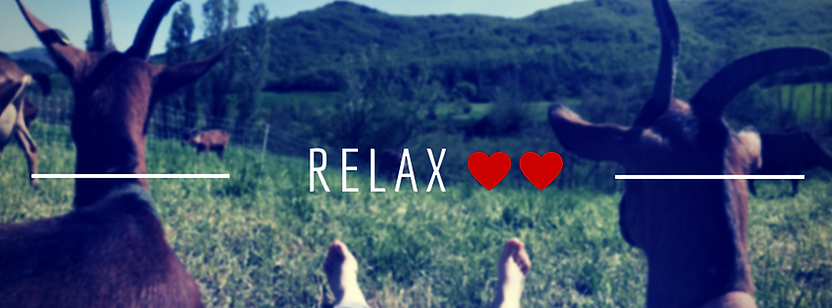 RELAX (1).png