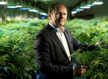 Le marché du Cannabis Light touche le milliard en Europe sous le regard des géants Américains.