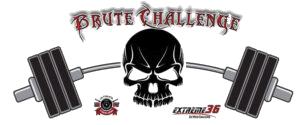 BRUTE-logo-300x125