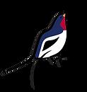 Bird 2_2.png