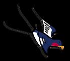 Bird 1_2.png