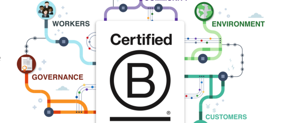 Why B Corporation Certification Matters For Sustainable Financial Advisors