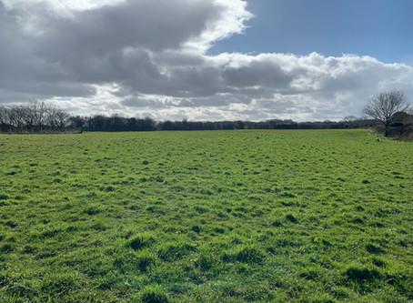 Coronavirus Statement - Ryecroft Meadow