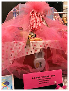 DCDogFinders participates in a Critters For The Cure fund raing event.
