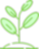 growAsset.png