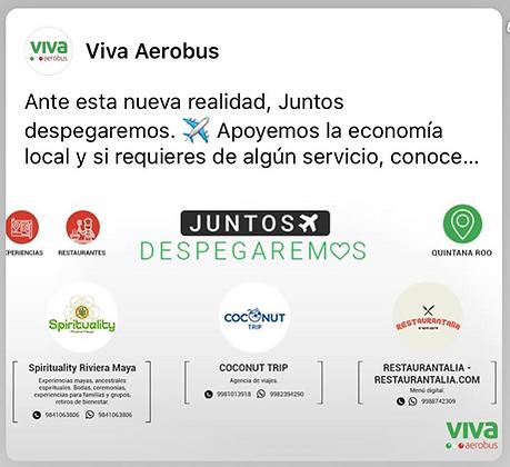 001.vivaAerobus.002.png