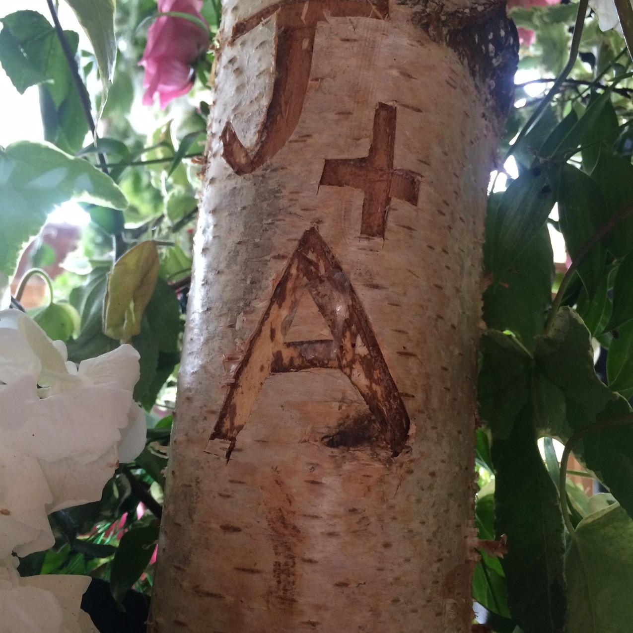 Birch chuppah carved