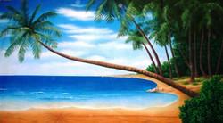 Tropical beach 30x10