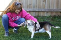 Asheville-Pet-Sitting---Dog-Sitting
