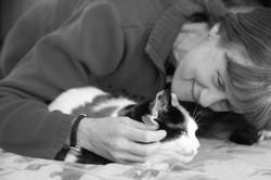 Asheville-Pet-Sitting-Cat-Sitting