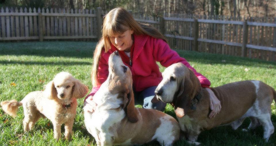 Dog Sitting, Dog Errands, Dog Walking