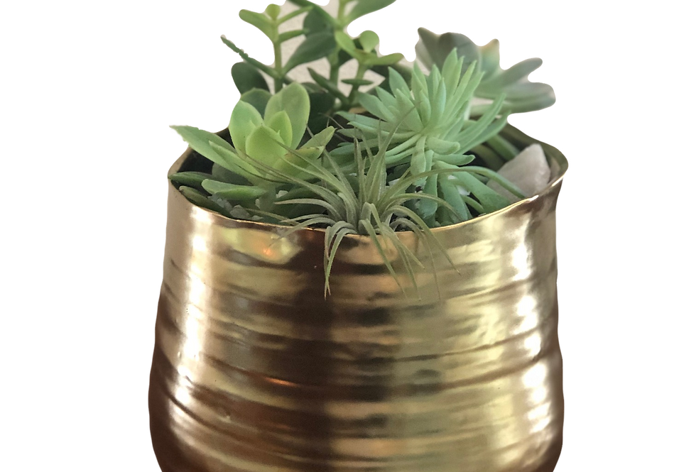Gold Succulent