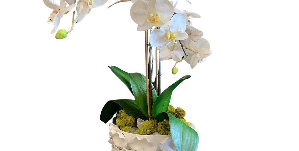 Faux Orchid in White Ceramic Vase