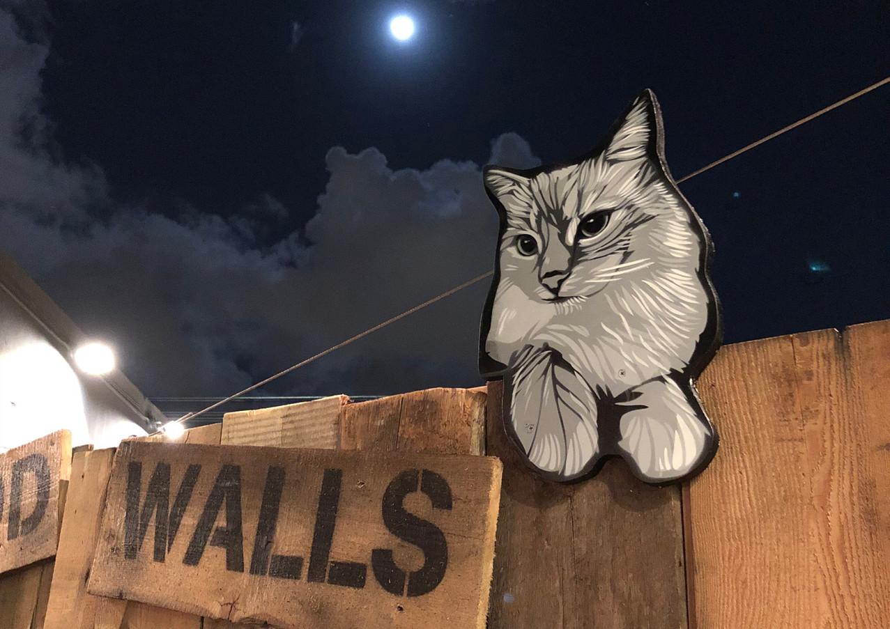Wynwood_walls_9.jpg