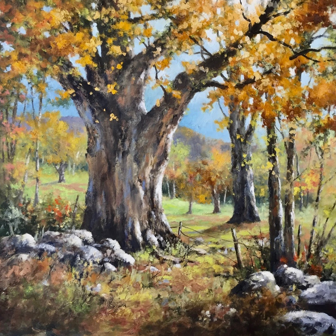 GS Old Maple 30_x 30_  oil $6,800.