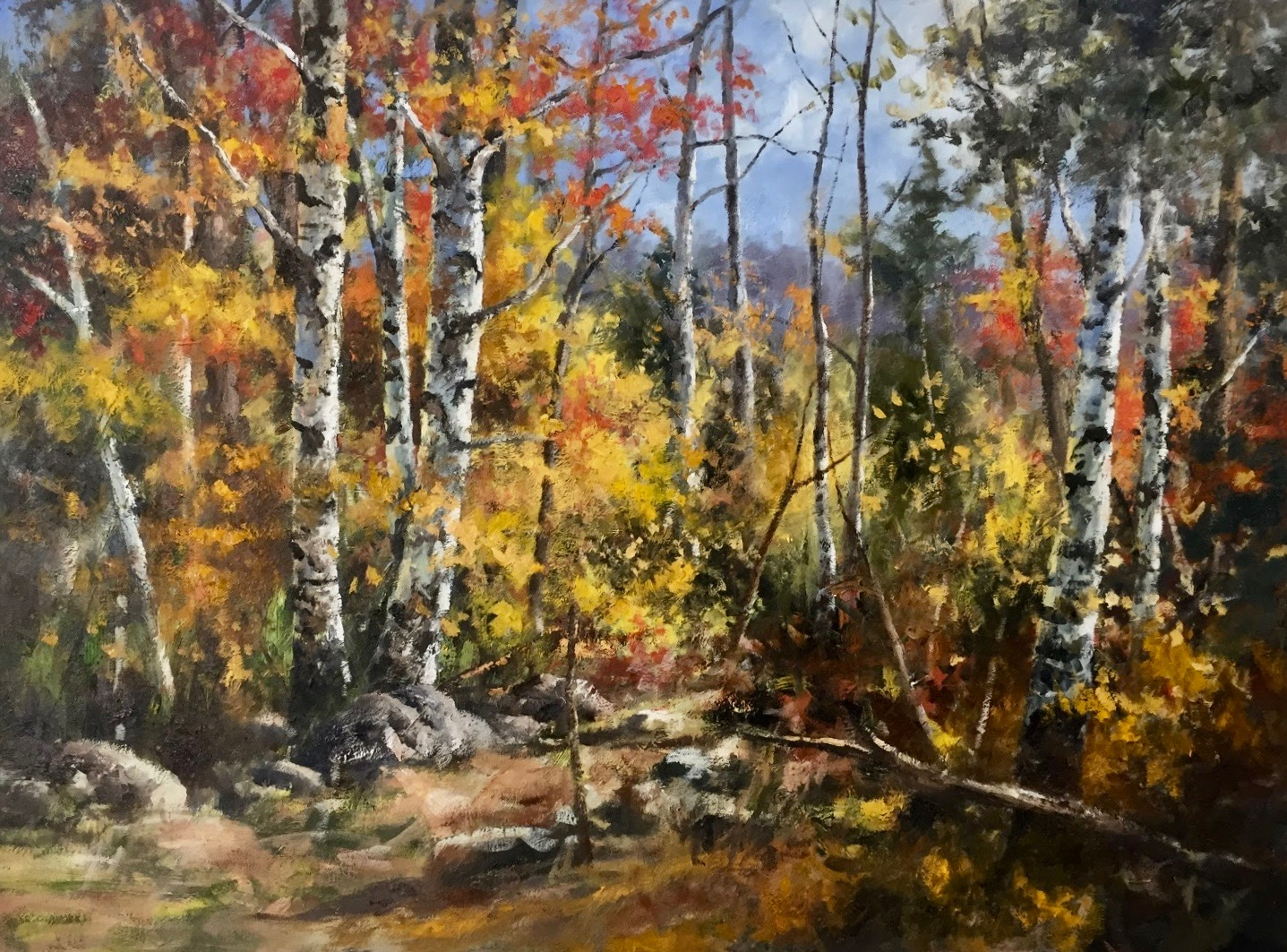 GS Birch Forest 36_x 48_ oil $12,000.