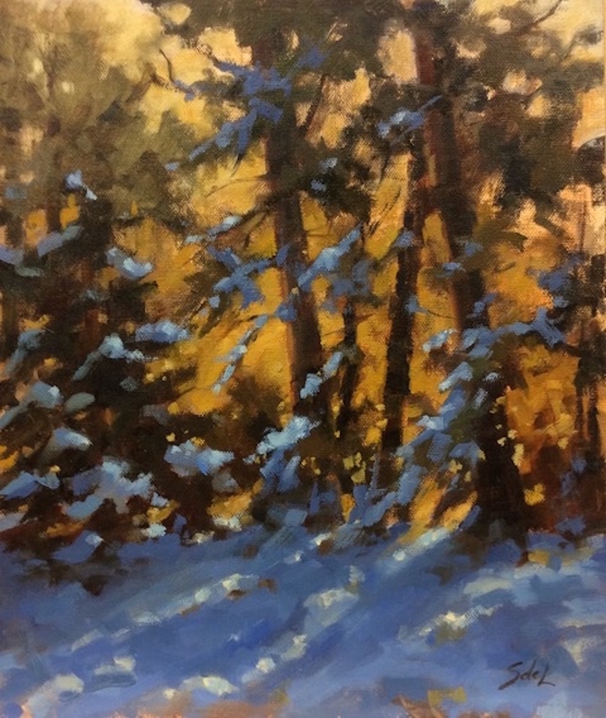 SDL Winter Light 12_ x 10_ Oil $675
