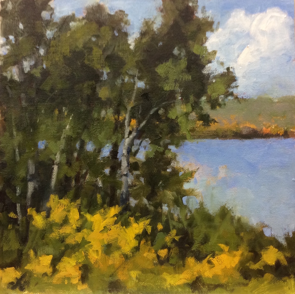 SDL Lake View 10_ x 10_ Oil $625