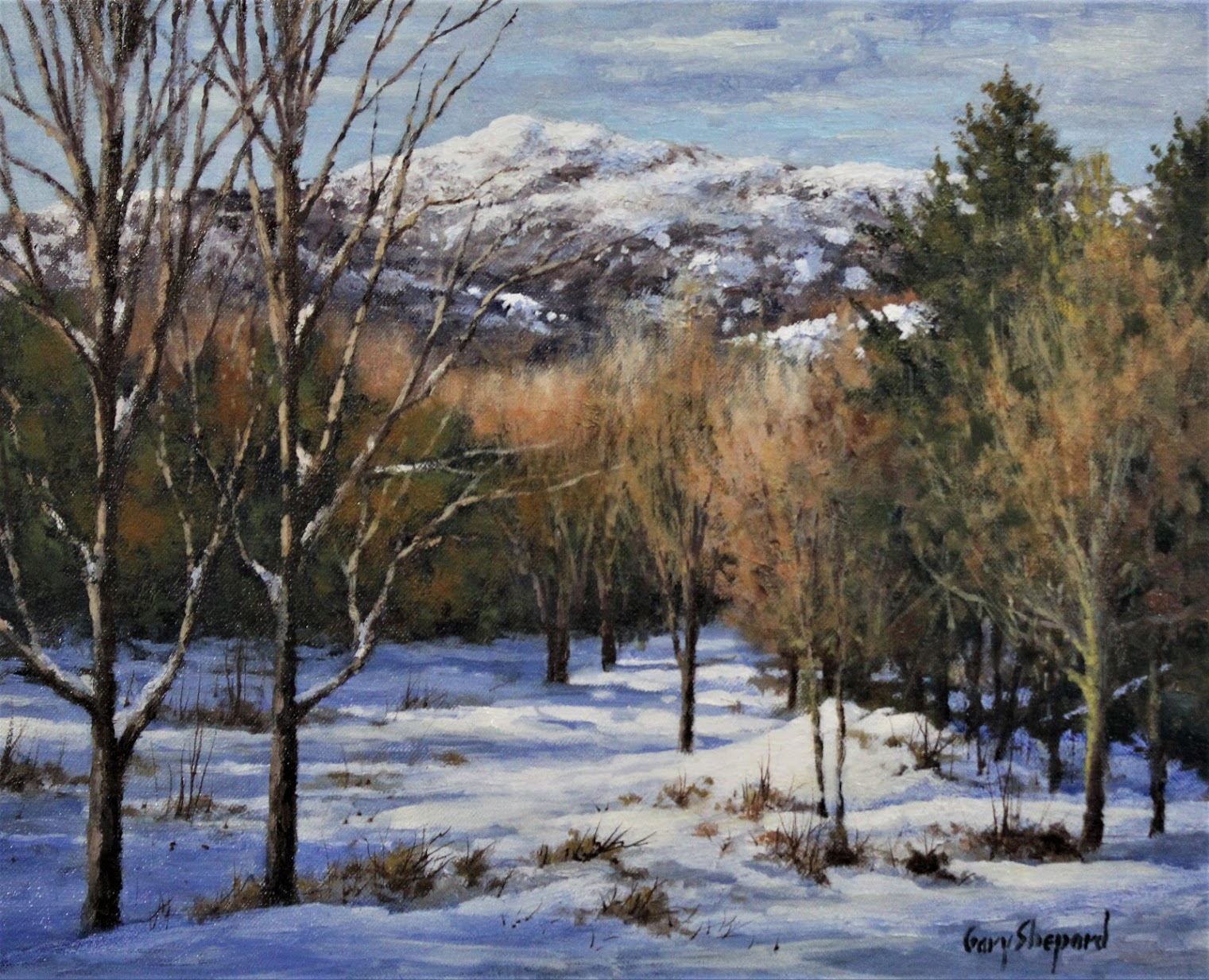 GS Snow Capped 16_x 20_ oil  $2,600