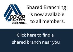 sharedbranching