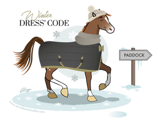 Préparer son cheval à affronter l'hiver