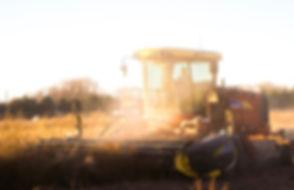 Sunset Harvest_edited.jpg