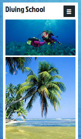 Health & Wellness website templates – Scuba Diving