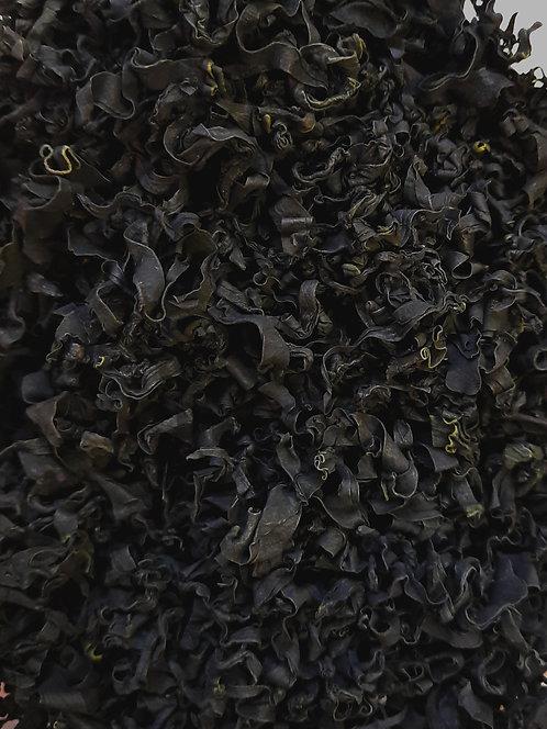 Wakame, jūras aļģes (seaweed Wakame)