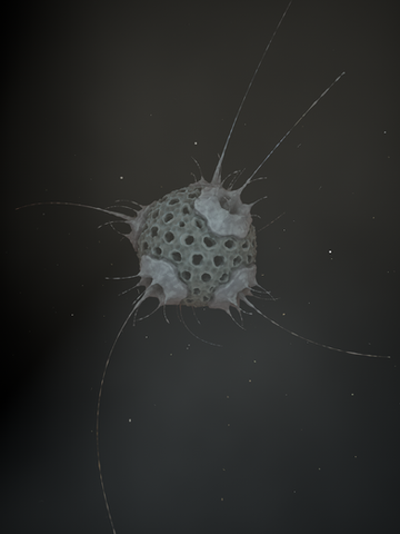 Hairy Ball Filter.png